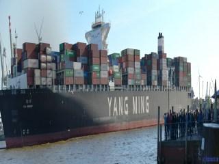 Ying-Yang YM Winner